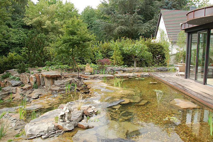 Gartenteiche teich und garten schwimmteiche gartenteiche for Gartenteiche bilder
